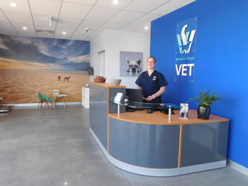 Wellington village vet